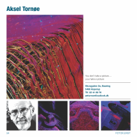 kunstner Aksel Tornøe_Side_54